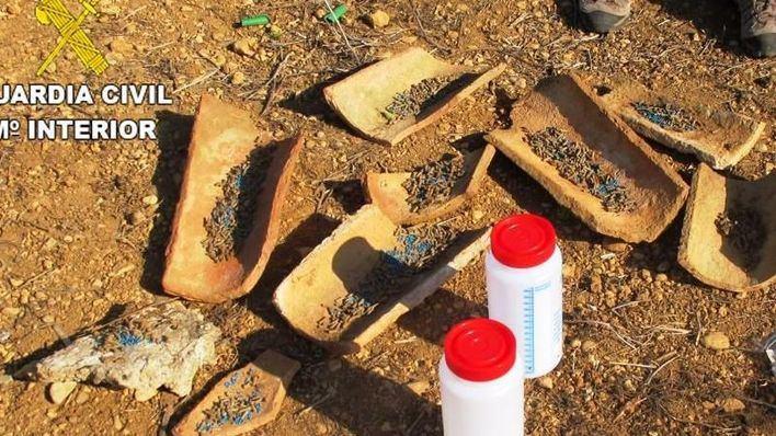 El Gob denuncia uso de cebos envenenados en el campo menorquín