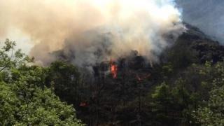 Continúan activos 28 incendios en Asturias