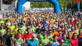Más de 1.500 participantes en la 33ª Sol Half Marathon Magaluf