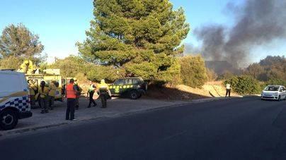 Entra en vigor la prohibición de hacer fuego en zonas forestales