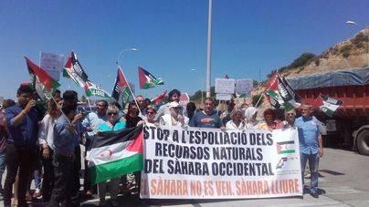 Activistas se manifiestan contra la descarga de arena del Sáhara en el Port de Palma