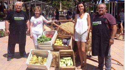 Puerto Portals dona 150 kilos de alimentos a Mallorca Sense Fam