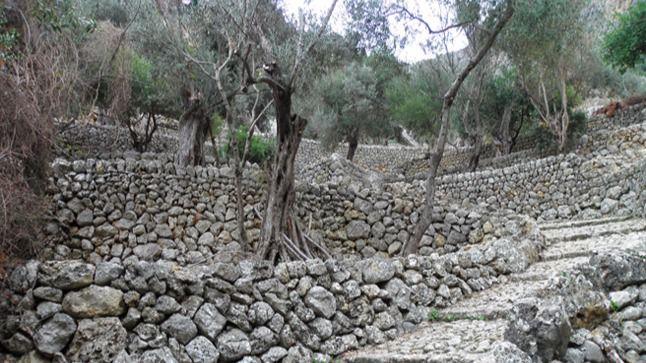 La construcción con pedra en sec, bien de interés cultural inmaterial