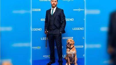 Tom Hardy a su perro muerto: