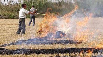 Ibanat prohibe la quema autorizada de rastrojos por