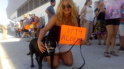Peluditos de Son Reus organiza un desfile canino