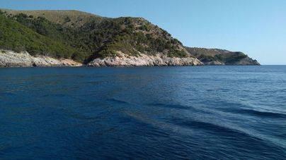 El 21,6% de las aguas interiores de Balears son reserva marinas