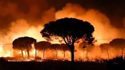Perimetrados dos de los tres focos del incendio que amenaza Doñana