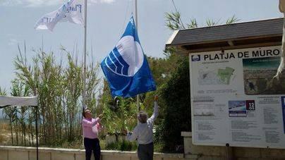 La nueva bandera azul ondea en la Platja de Muro