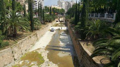 Emaya retira 280 toneladas de residuos de Sa Riera
