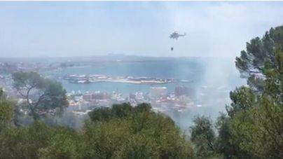 El incendio del bosque de Bellver moviliza numerosos efectivos, dos aviones y dos helicópteros