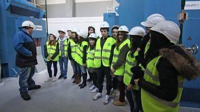 Más de 5.000 alumnos aprenden eficiencia energética con Endesa