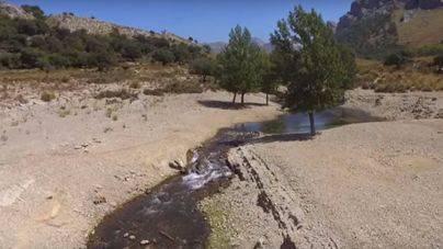 Imagen de un arroyo de la cuenca del embalse de Cúber