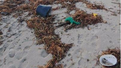 Más del 75 por ciento de los lectores opinan que las playas de Mallorca están más sucias que en 2016