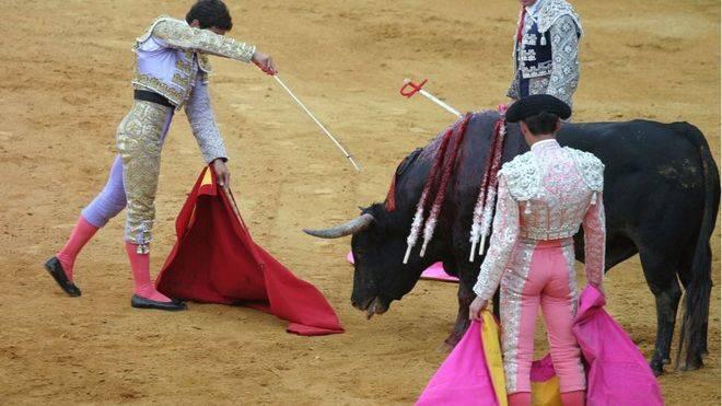 El Gobierno anuncia que recurrirá ante el Constitucional los Toros a la Balears