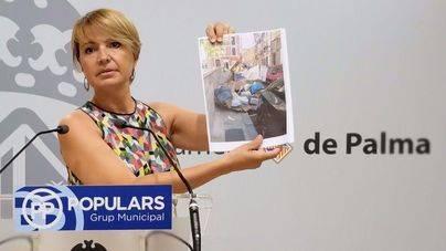 """Durán califica de """"estado de emergencia"""" la suciedad de Palma y exige a Noguera """"medidas urgentes"""""""