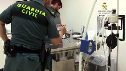 Investigado el propietario de una clínica veterinaria por maltrato animal y estafa en Palma