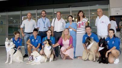 El programa 'dogspital' permitirá que pacientes ingresados puedan recibir las visitas de sus perros