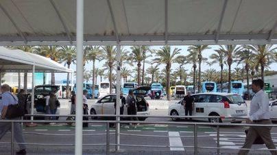 Palma inicia una campaña de control de taxis sin licencia en el aeropuerto