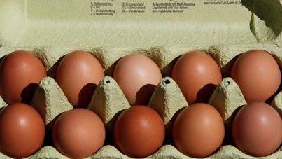 Inmovilizados en Vizcaya 20.000 huevos contaminados con fipronil