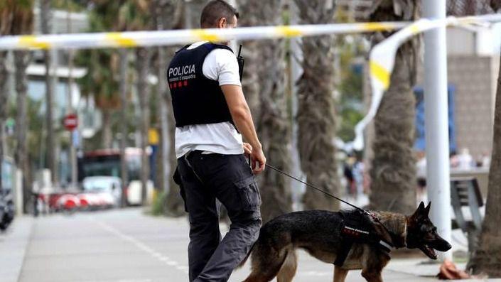 Los Mossos rastrean desde esta madrugada Manlleu y Ripoll en busca del terrorista huido