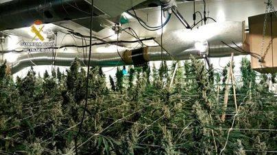 Desmantelan en Ibiza un laboratorio de marihuana con hilo musical