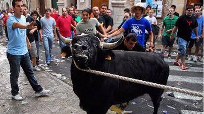 Fornalutx celebra este jueves el 'correbou' sin cuerdas ni sacrificio