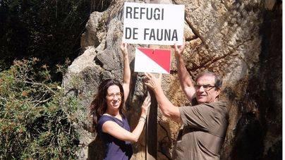 El Consell prohibe la caza en cinco fincas públicas de Escorca y Estellencs