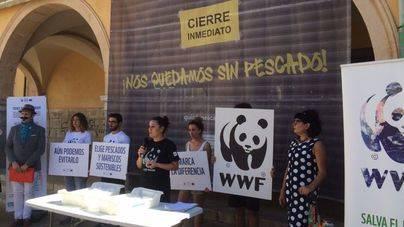"""""""Cierran"""" el Mercat de l'Olivar para protestar por la sobreexplotación de la pesca en el Mediterráneo"""
