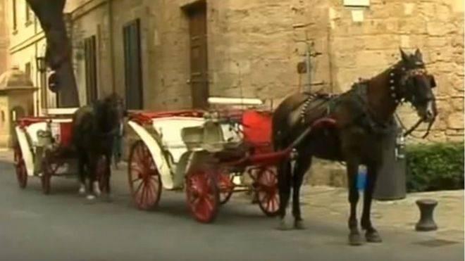 El Ayuntamiento de Palma anuncia una nueva ordenanza para regular las galeras