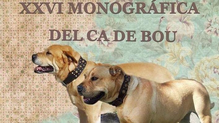 Alaró celebra este sábado la XXVI Monográfica del Ca de Bou