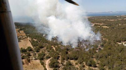 El Govern contrata 5 helicópteros y 3 aviones por 7,2 millones para la lucha contra incendios forestales