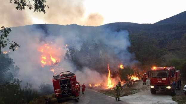 Cuatro muertos en el centenar de incendios que arrasa Galicia