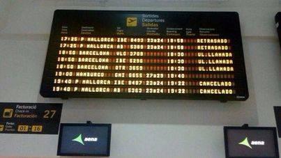 La colisión de aves contra un avión en Palma provoca una nueva cancelación de vuelos interislas