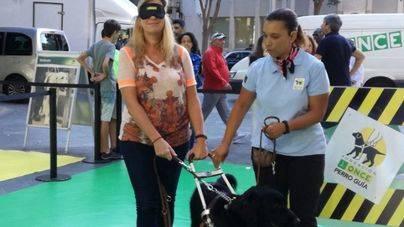 Exhibiciones de perros guías y una carrera 'a ciegas' en Palma