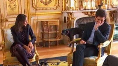 Nemo, el perro de Macron, pillado orinando en plena reunión de ministros