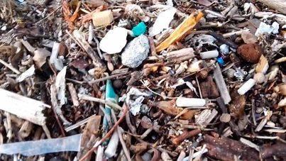 Voluntarios limpiarán el domingo Can Pere Antoni, ante los vertidos de aguas insuficientemente depuradas