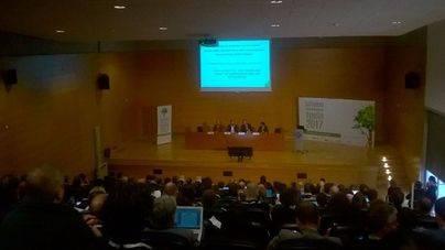 Cumbre europea en Palma para afrontar la Xylella: el campo pide 'una respuesta global'