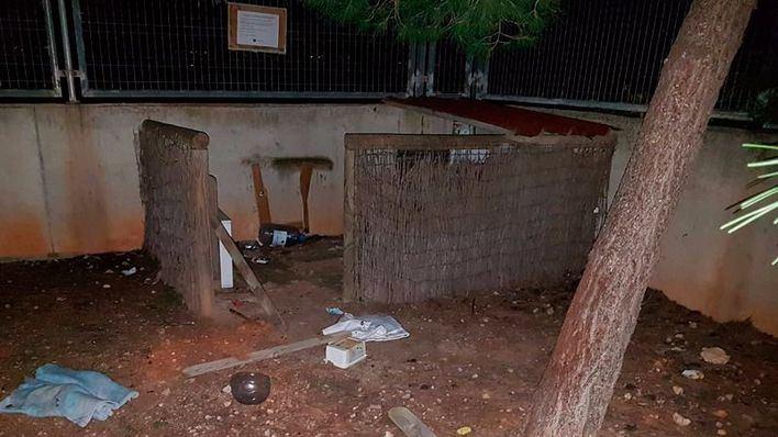 Vandalismo en una colonia de gatos de Marratxí