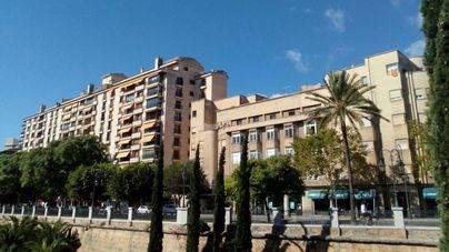 Sube el 20 % la ocupación y Palma es la ciudad española más cara para alquilar en el puente