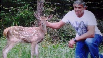 Bambi, la cierva que convenció a un cazador de dejar la caza