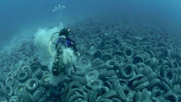Alertan de la rápida degradación de los mares en los últimos 20 años