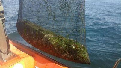 Recogen 44 toneladas de basura del mar balear en un año