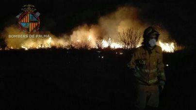 El viento ha complicado la extinción de un incendio en la carretera de Manacor