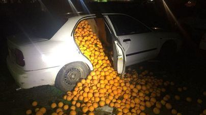 Cinco detenidos con cuatro toneladas de naranjas en su coche