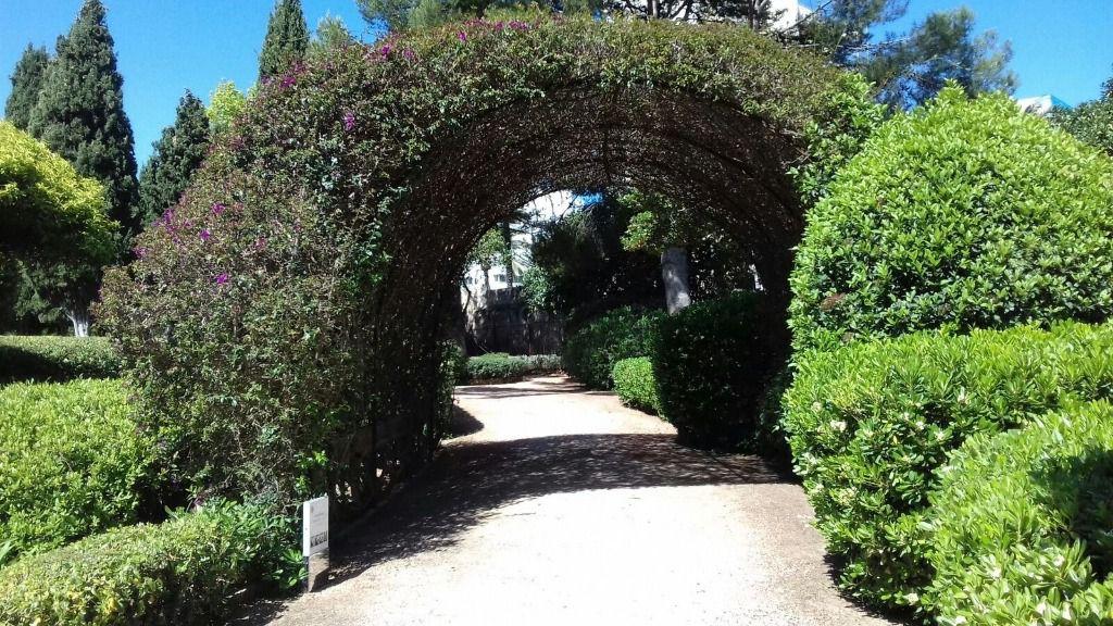 Los jardines de marivent se cerrar n al p blico del 21 de for Jardines de marivent