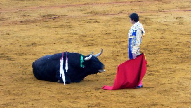 """Los animalistas auguran que """"Balears será la cuna de la reforma de los toros"""""""