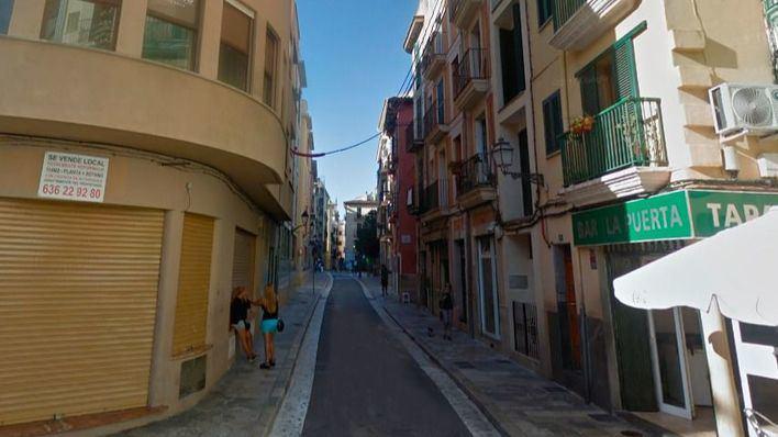 Un año y diez meses de cárcel por agredir a un hombre e intentar matar a su propia perra en Palma