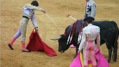 Costa promete que el Govern velará por el cumplimiento de la ley de toros a la balear