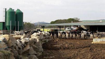 El Gobierno reduce el IRPF a productores agrícolas y ganaderos